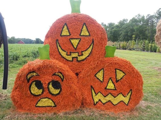 "Love this trio of ""pumpkins."" Reckon the bottom ones are worried about the one on top?:"