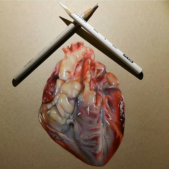 Realistic drawing of a heart | art | Pinterest | Drawings ...  Realistic