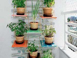 Decoração: Jardim vertical