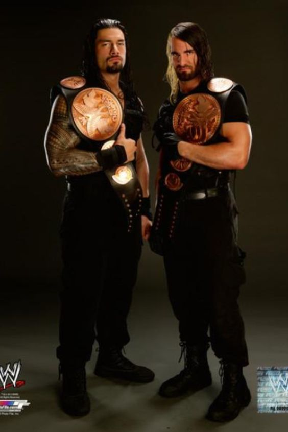Seth Rollins (right), the Architect of The Shield (and my 2nd fave!!!)