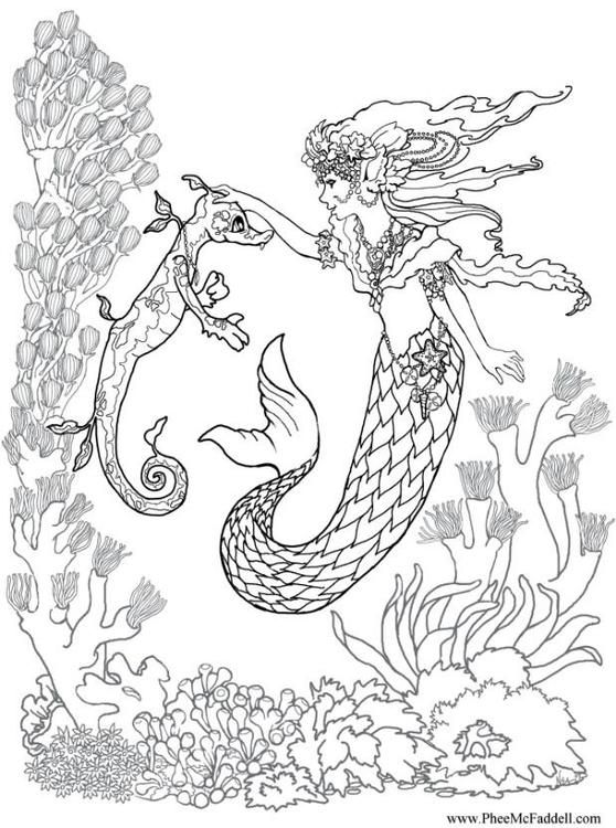 En Coloring Pictures Pages Photo Mermaid And Seahorse P6881 Jpg 558 750 Mermaid Coloring Pages Mermaid Coloring Mermaid Coloring Book