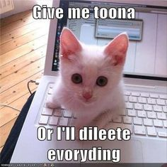 Funny Animal Pictures Of The Day – 30 Pics  - Catsincare.com