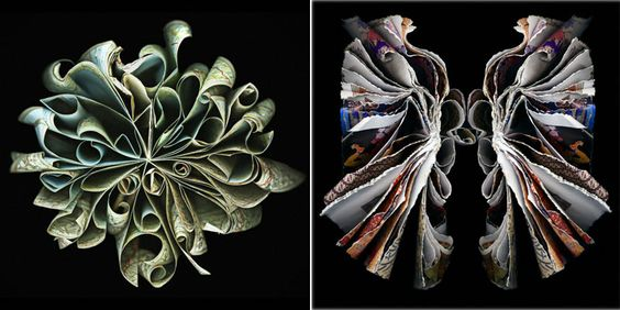 For almost six years, photographer and artist Cara Berer has been taking a very unique approach to book art. She thoughtfully bends, folds and occasionally soaks old pages of discarded catalogues, outdated dictionaries, dated instruction manuals and rejected telephone books, transforming them into marvelous works of art.