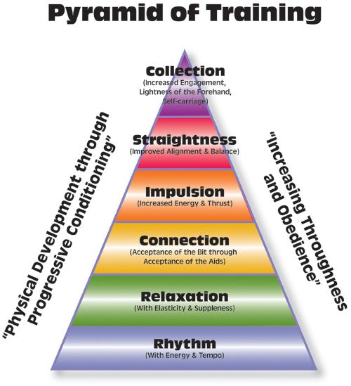 Dressage: the lifelong persuit of the perfect pyramid of training.