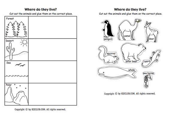 Pin By Tricia Stohr Hunt On Animals Animal Habitats Kindergarten Life Science Life Skills Classroom Animal and their habitats worksheets