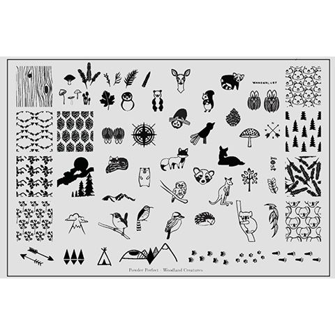 Powder Perfect- Stamping Plates - Woodland Creatures 01