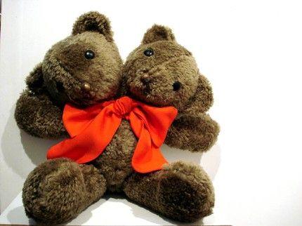 two-headed teddy
