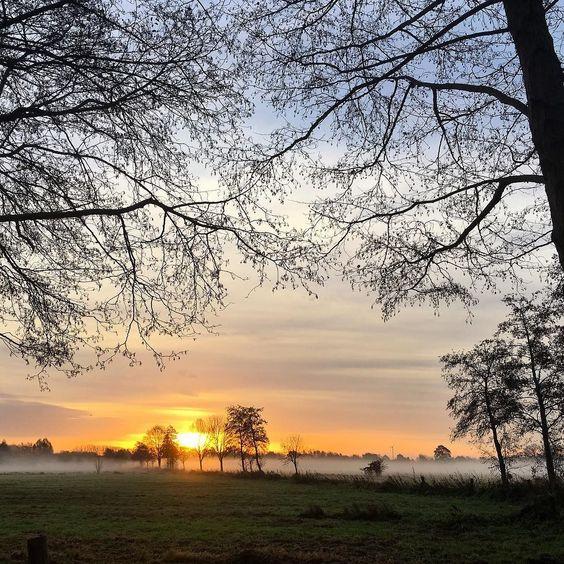 Moin vom Meer mit Sonnenaufgang  im Nebel zum Mittwoch! Verdammt schön hier.  #wasmitsport #nach #bvbleg #sunrise #steinhude #steinhudermeer  #runkeeper #9k  #nature #sky #sun #tree #beauty #light #cloudporn #weather #photooftheday  #green #skylovers  #weather #mothernature