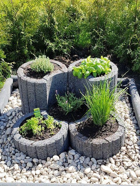 Krauterbeet Aus Pflanzringen Krauterbeet Aus Pflanzringen Bauen Pflegeleicht Garden Deco Herb Garden Design Plants Patio Herb Garden