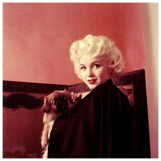 Marilyn Monroe with a dog