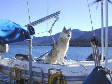 Unser Sunny, bereit für die große Fahrt ins Abenteuer.