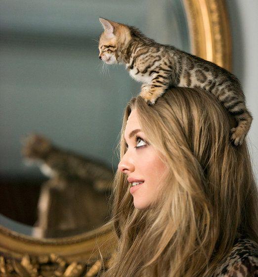 Cita a ciegas en París con Amanda Seyfried