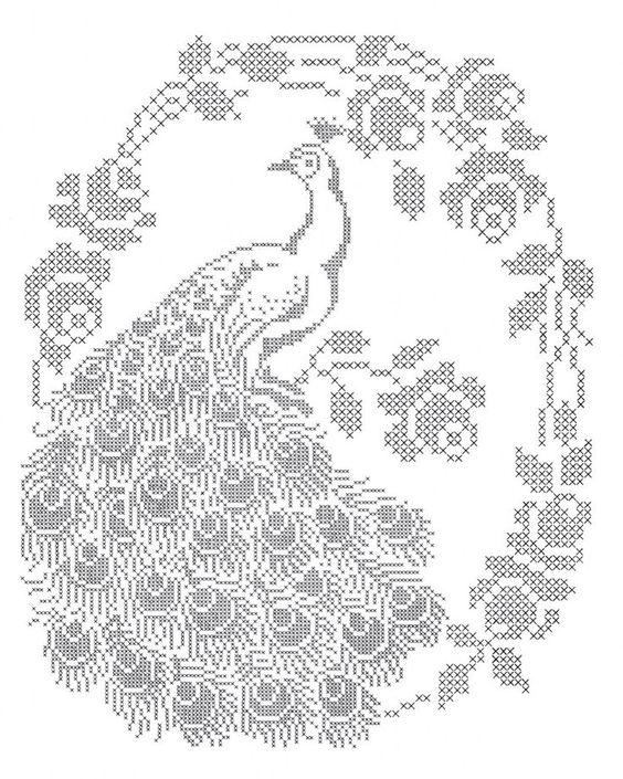 Peacock patrón de punto de cruz