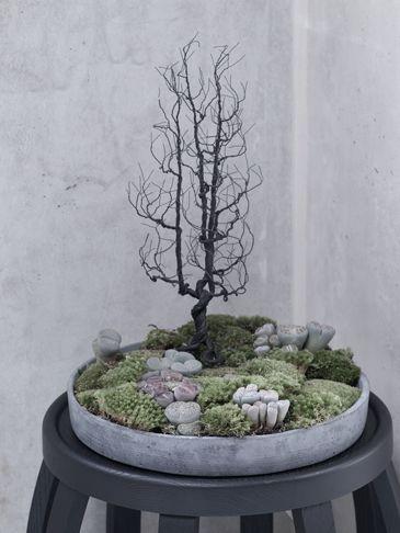 mini-tree :-D