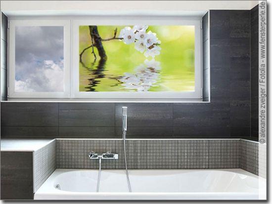 Erfrischende Kirschblute Kirschbluten Glasbilder Bilder