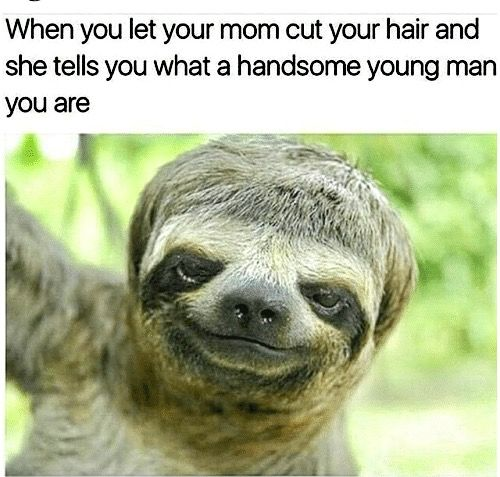 Let Your Mom Cut Your Hair,  It'll Be Fine, She Said… But You Still Know You're Ugly AF….  :P