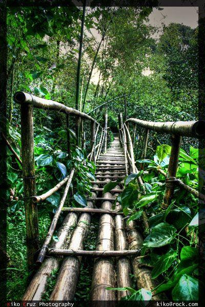 Bamboo Bridge in Tam-Awan Village, Baguio City