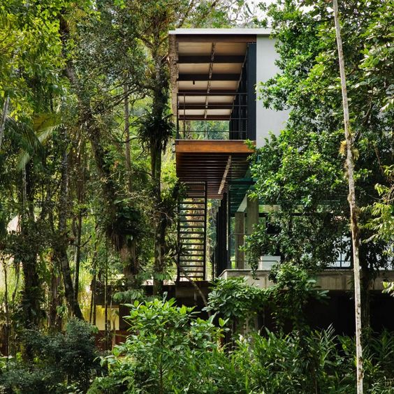 House In Iporanga / Nitsche Arquitetos Associados