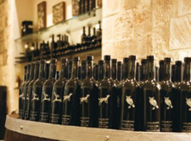 Take a kosher tour to the famous Carmel Winery in Israel!