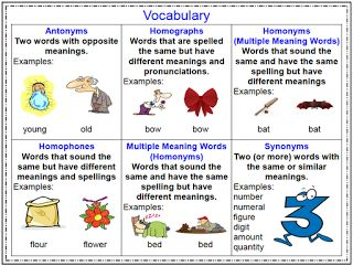 Worksheets Word Wise  With Synonym ,antonym,homophone image result for homonyms examples english grammar pinterest this is a student hand out with definitions and the following vocabulary terms