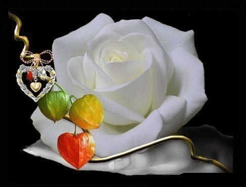 Image result for roses gif:
