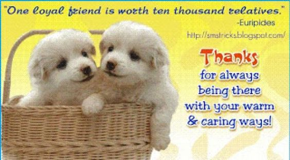 Friendship Quotes Sms In Tamil  Tamil Sms  Maza Point
