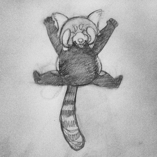 There's the rough red panda sketch