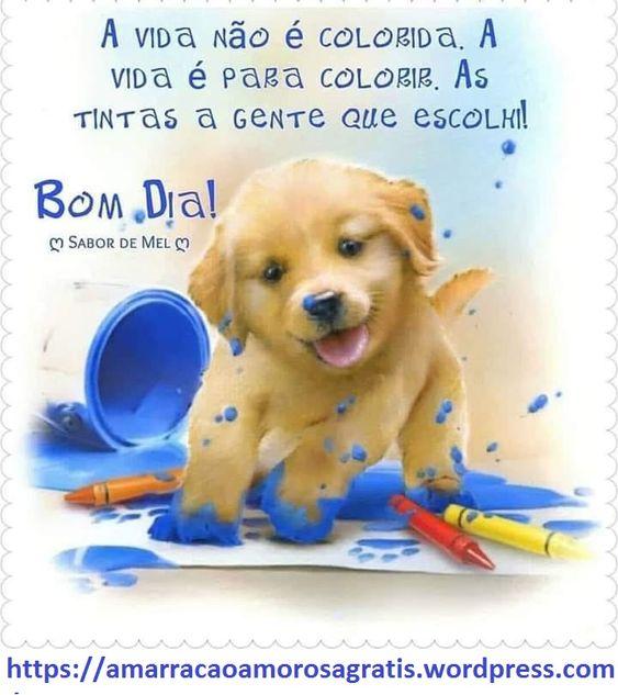 A vida não é colorida. a vida é para colorir.as tintas a gente que escolhe!