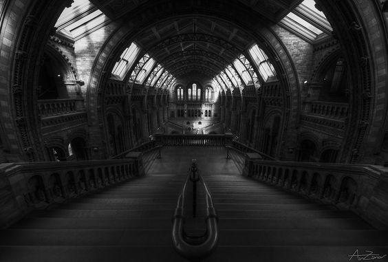 third of my NHM trilogy  Keep posting my pictures from last september London trip   To see the whole tour you can have a look at the map on my facebook page   My Social presence: Facebook Pinterest 500px Fluidr Instagram FlickRiver  Nikon D7000 + Sigma Wideangle 8-16mm HDR from 3 shots, handheld DxO, Noiseware, Photomatix, Photoshop, Nik Silver Efex Pro   Day 3, Natural History Museum