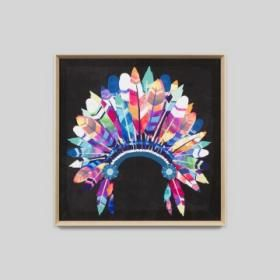 Full Headdress | Vibrant Black Framed Print | Matthew Thomas
