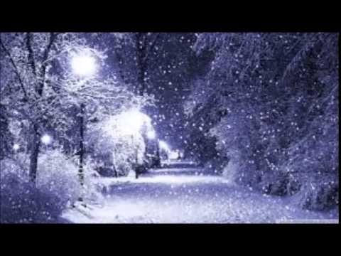 Thyra: Flora in Winter