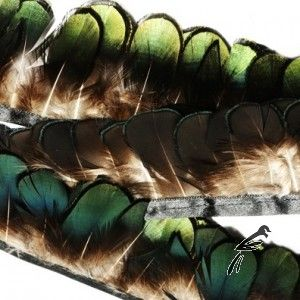 Feather Lady Amherst Plumage on Fringe (Price for 10cm)