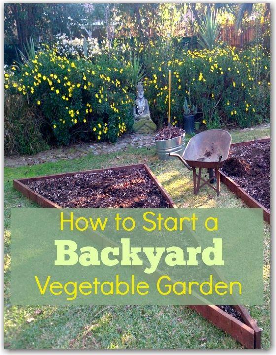 Backyard vegetable gardens vegetable garden and vegetables on pinterest for How to start a backyard garden