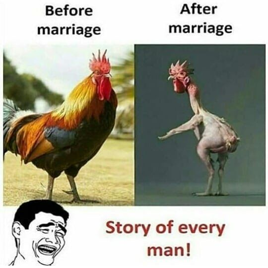 Hilarious Pictures Before And After Marriage The Story Of Every Man Before And After Marriage Funny Winter Pictures After Marriage