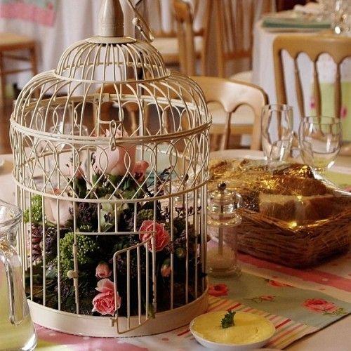 Ptaki wypuść na wolność, a klatkę przeznacz na coś innego :)