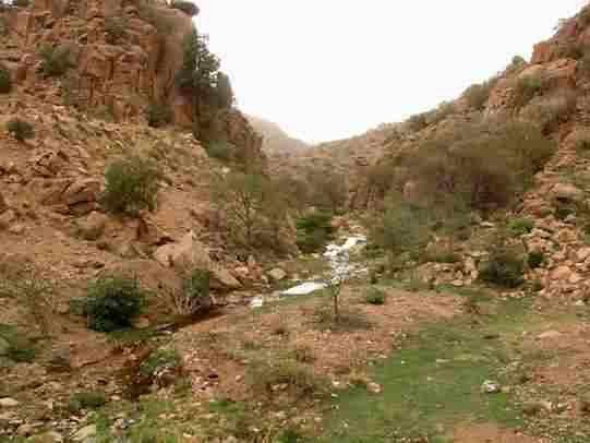دليل لايفوتك جبل الرديهة يعتبر جبل الرديهة من الجبال المشهورة بالمملكة العربية السعودية يقع هذا الجبل بشمال جدة على بعد 20 كم Country Roads Outdoor Road