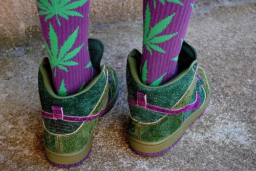 cannabis tights