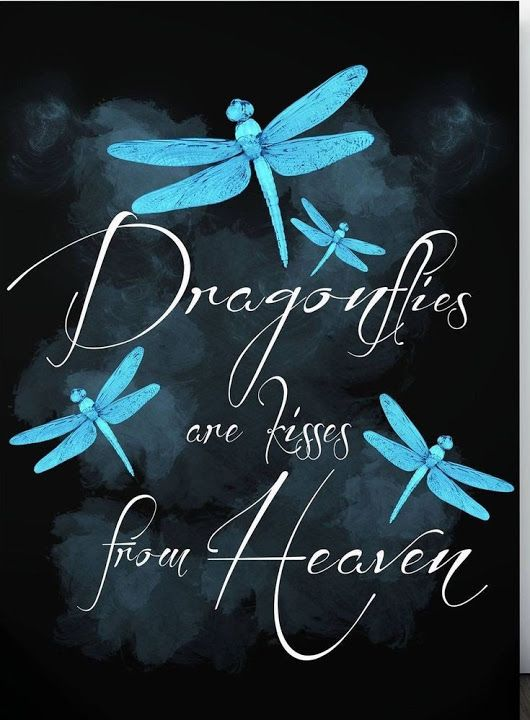 When I see a Dragonfly Sign Angel Inspirational Sign Lost Love One Sign Blue Dragonfly Sign Blue Dragonfly Sympathy Sign Free Ship