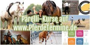 Parelli Kurse auf www.PferdeTermine.de - deutschlandweit. Trainer können ihre Kurse kostenlos eintragen!