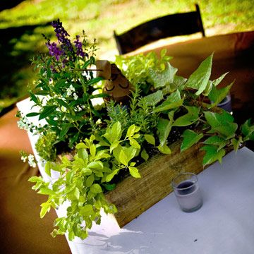 Herb box centerpieces are super easy to make.