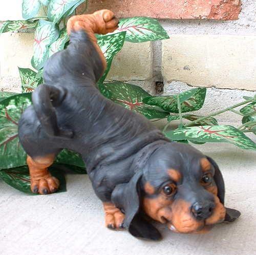 dachshund garden statue Dachshund Dog Peeing Garden Statue