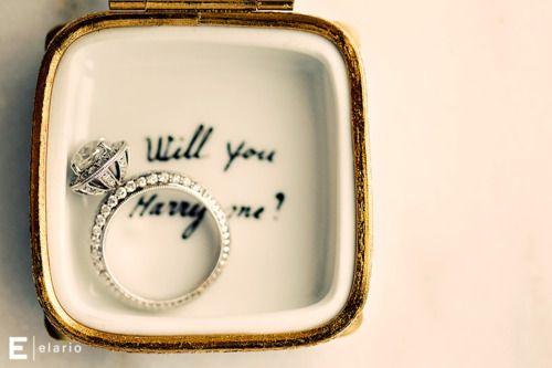 Cute proposal.
