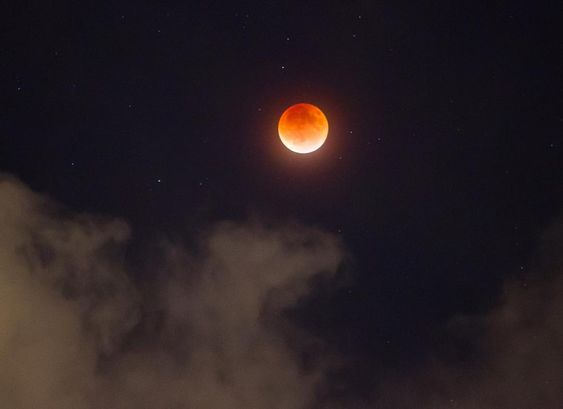 """""""Incredible view tonight of the lunar eclipse #supermoon from South Florida. It was cloudy all day, but there was a break in the clouds just long enough to…"""""""