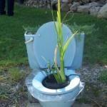 Repurposed Planters  