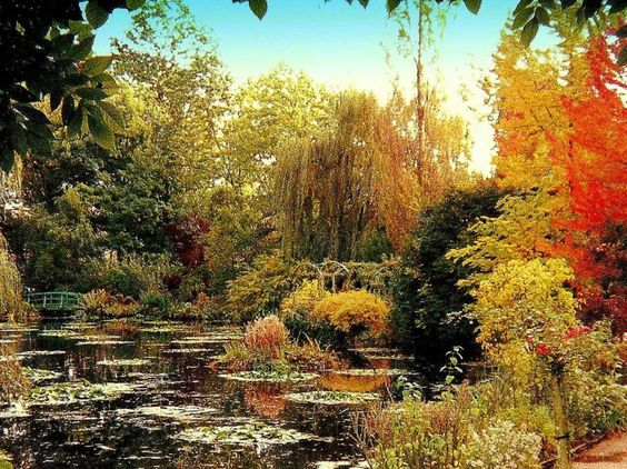 the gardens at Giverny. The different shades of color are just unbelievable.....