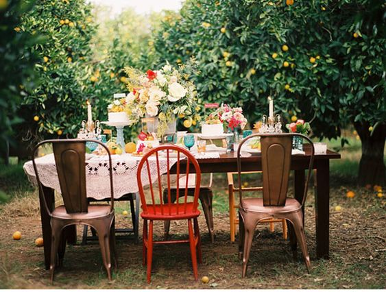 OH to throw a party in a lemon orchard.