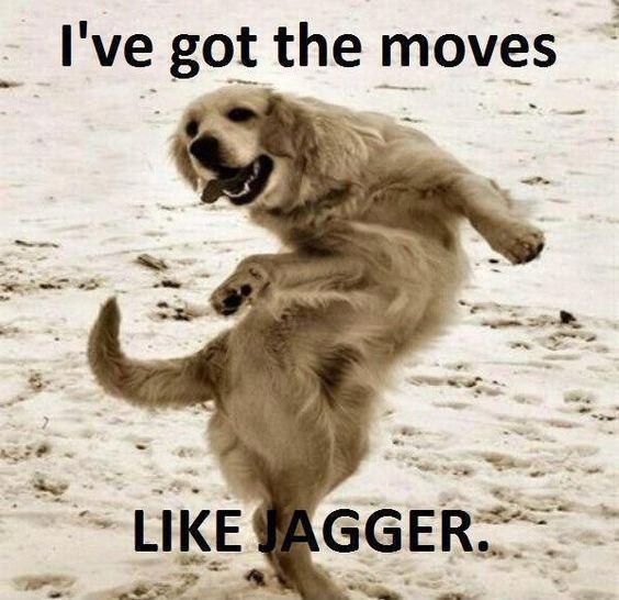 Haha: