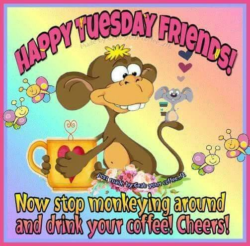 Stop Monkeying Around And Drink Your Coffee Cheers Happy Tuesday Tuesday Tuesday Quot Happy Tuesday Quotes Happy Tuesday Pictures Tuesday Quotes Good Morning