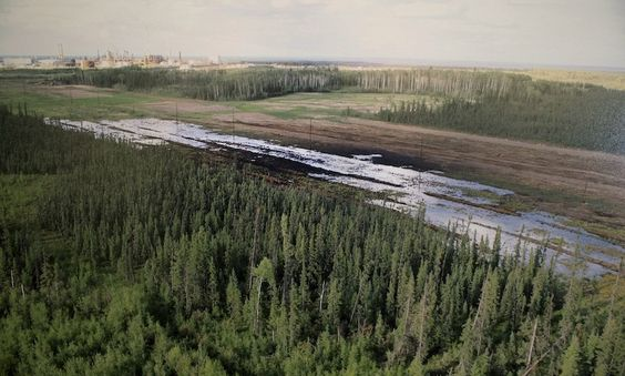 A Nexen-supplied image of a pipeline oil spill near the Long Lake oil sands operation is shown at a press conference in Calgary, Alta., Friday, July 17, 2015. (Larry MacDougal/CP)