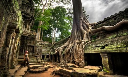Ta Prohm, Angkor Wat, Siem Reap, Camboya